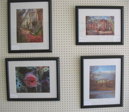 Arts Trail Photo Display, April 2009 - Harold Motte's photographs