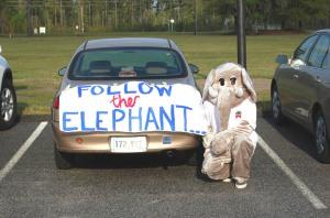 elephantandcarsign